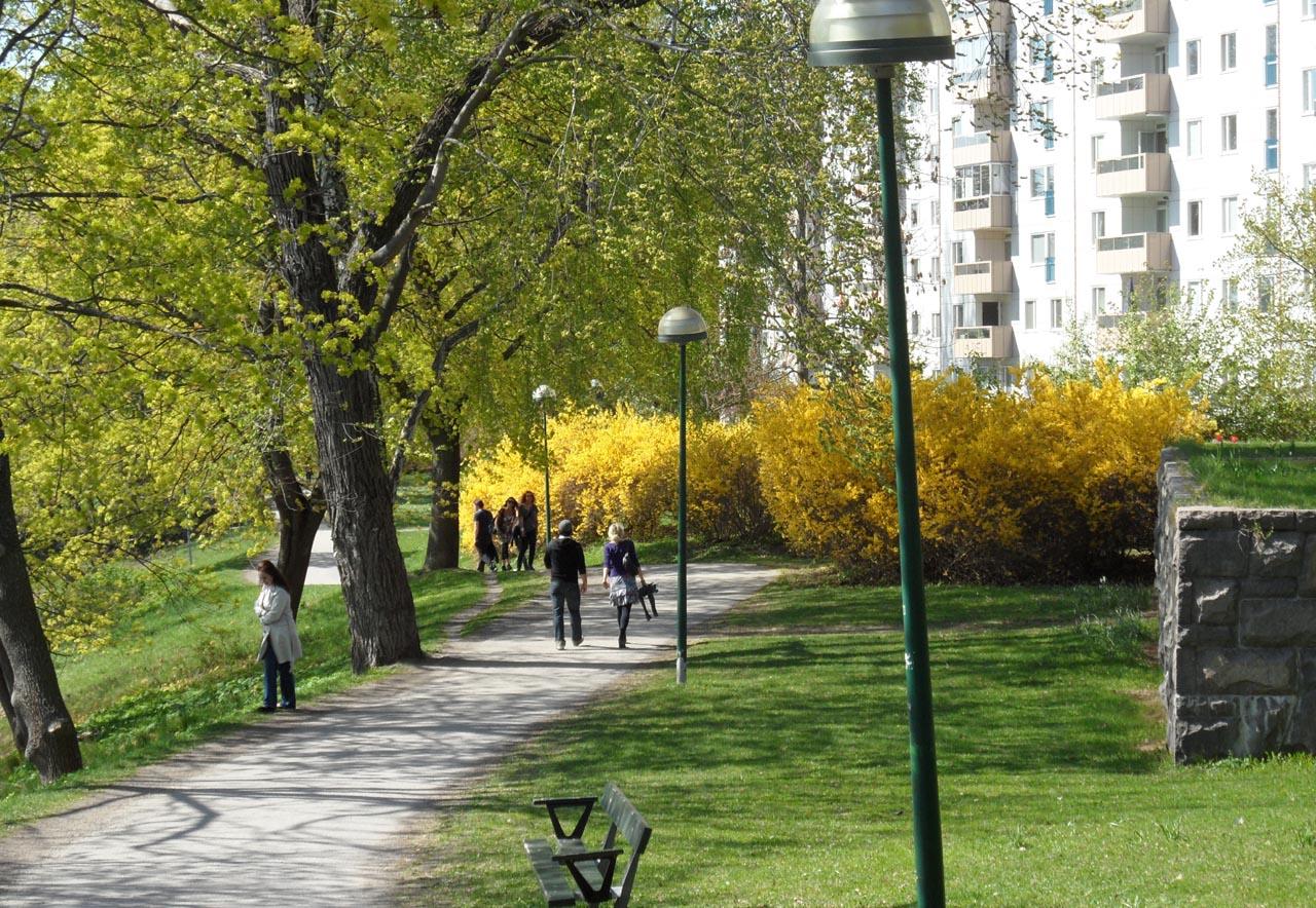 Nature en ville corinne rufet for Ville nature